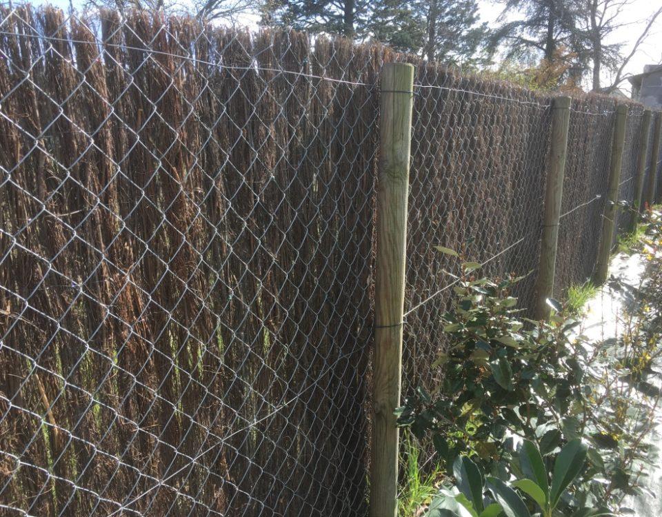 Allée et clôture